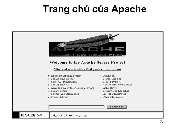 Trang chủ của Apache 65