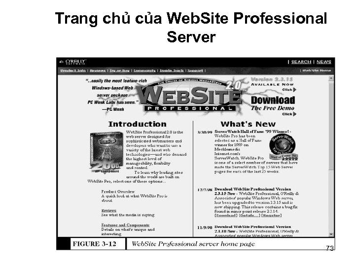 Trang chủ của Web. Site Professional Server 73