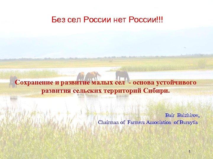 Без сел России нет России!!! Сохранение и развитие малых сел - основа устойчивого развития