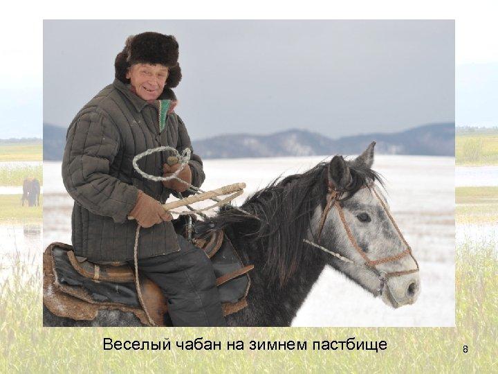 Веселый чабан на зимнем пастбище 8