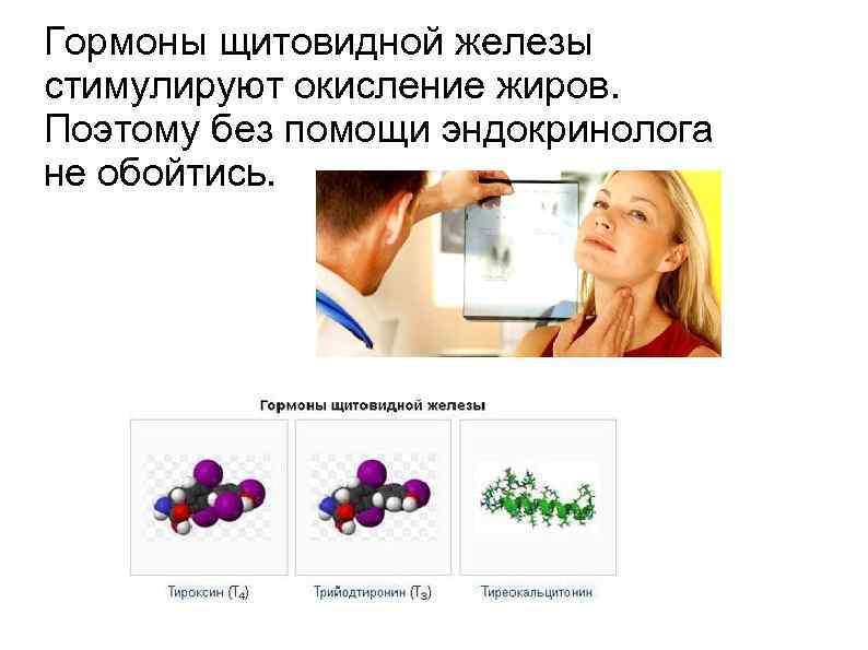 Похудение гормоны щитовидной железы