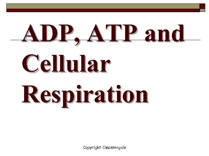 ADP, ATP and Cellular Respiration Copyright Cmassengale
