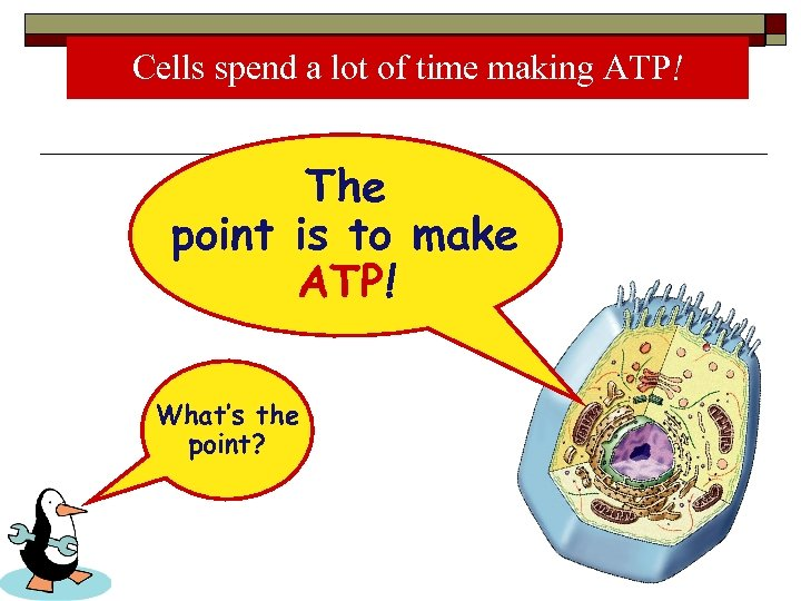 Cells spend a lot of time making ATP! The point is to make ATP!