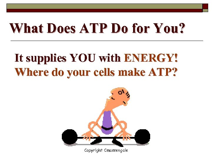 What Does ATP Do for You? It supplies YOU with ENERGY! Where do your