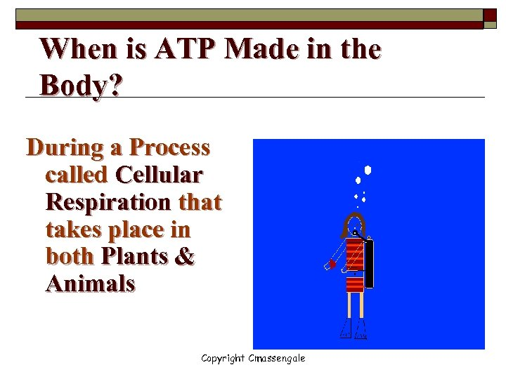 When is ATP Made in the Body? During a Process called Cellular Respiration that