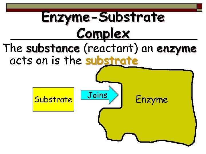 Enzyme-Substrate Complex The substance (reactant) an enzyme acts on is the substrate Substrate Joins