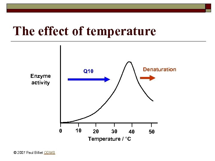 The effect of temperature Q 10 Enzyme activity 0 © 2007 Paul Billiet ODWS