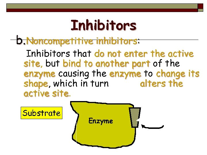 Inhibitors b. Noncompetitive inhibitors: Inhibitors that do not enter the active site, but bind