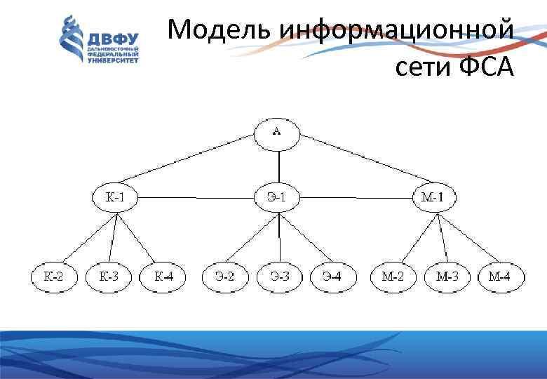 Модель информационной сети ФСА