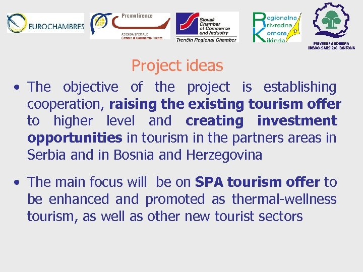 Project ideas • The objective of the project is establishing cooperation, raising the existing