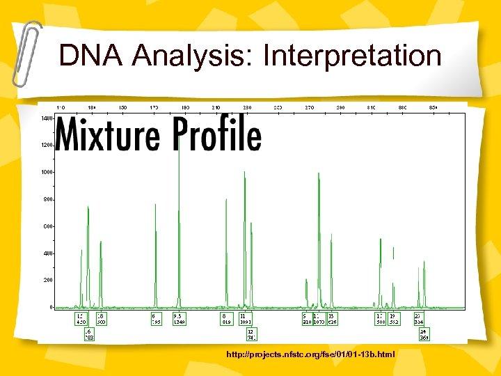 DNA Analysis: Interpretation http: //projects. nfstc. org/fse/01/01 -13 b. html
