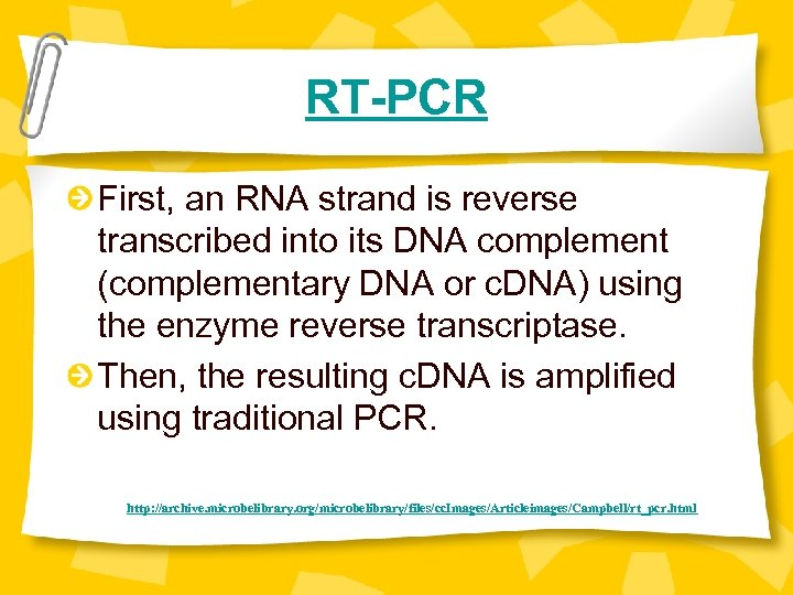 RT-PCR First, an RNA strand is reverse transcribed into its DNA complement (complementary DNA