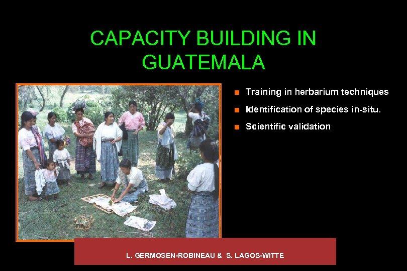CAPACITY BUILDING IN GUATEMALA ¢ Training in herbarium techniques ¢ Identification of species in-situ.