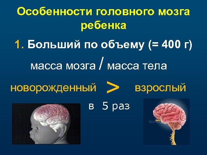 Особенности головного мозга ребенка 1. Больший по объему (= 400 г) масса мозга /