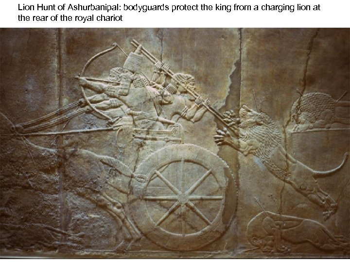 Lion Hunt of Ashurbanipal: bodyguards protect the king from a charging lion at the