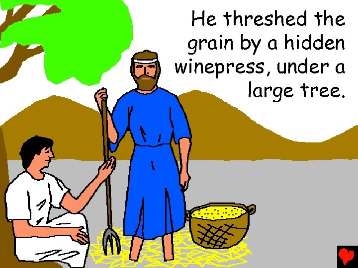 He threshed the grain by a hidden winepress, under a large tree.