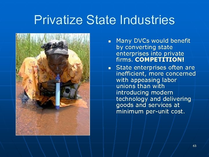 Privatize State Industries n n Many DVCs would benefit by converting state enterprises into