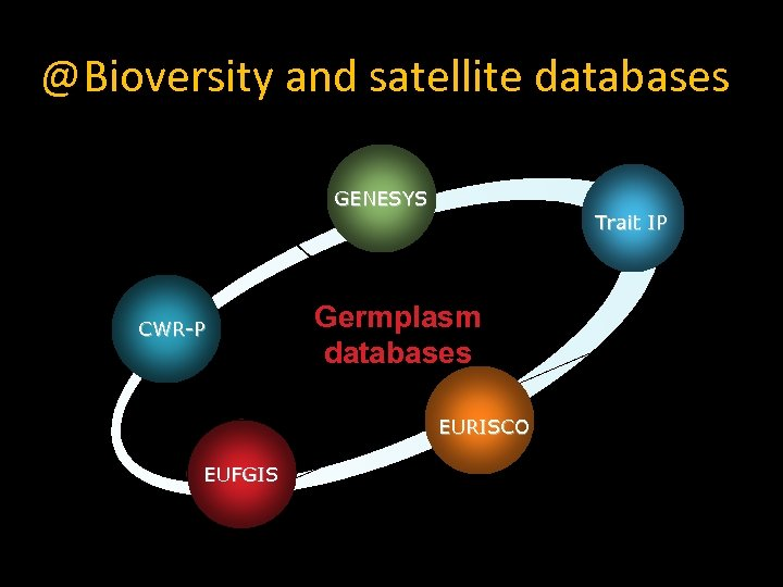 @Bioversity and satellite databases Pillars to information GENESYS CWR-P Trait IP Germplasm databases EURISCO