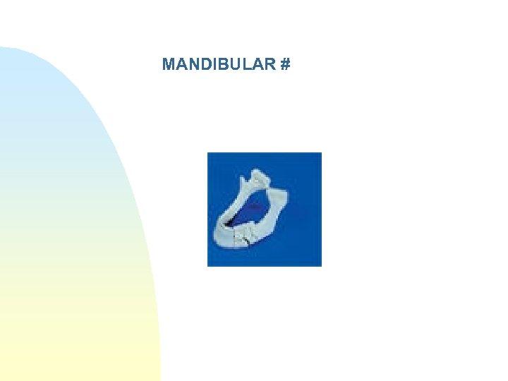 MANDIBULAR #
