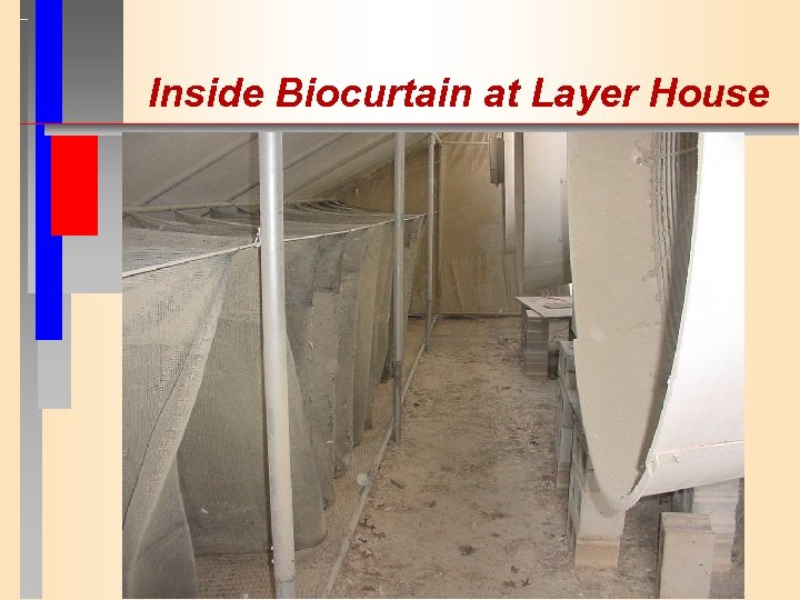 Inside Biocurtain at Layer House