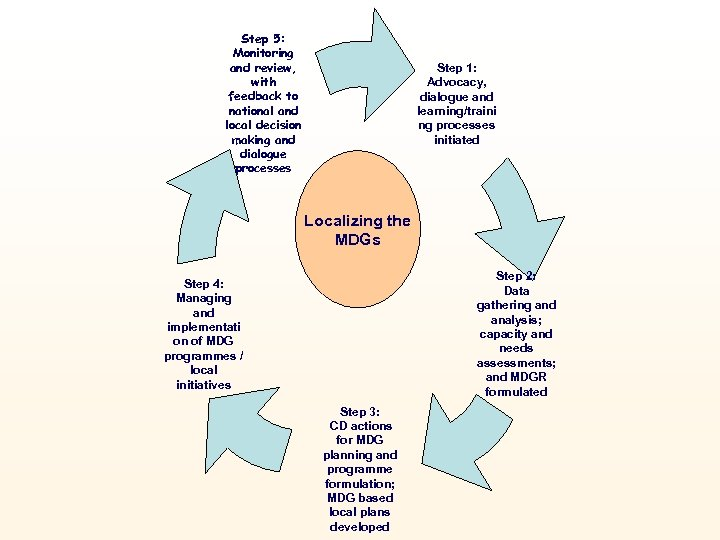 Step 5: Monitoring and review, with feedback to national and local decision making and
