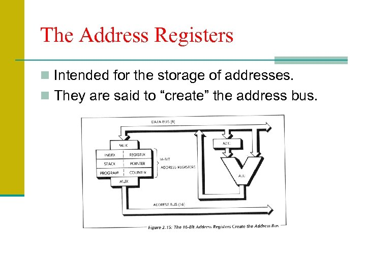 The Address Registers n Intended for the storage of addresses. n They are said