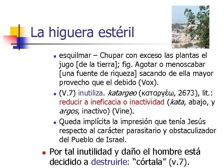 La higuera estéril n n esquilmar – Chupar con exceso las plantas el jugo