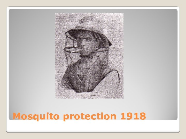Mosquito protection 1918