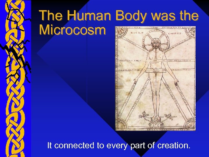 The Human Body was the Microcosm It connected to every part of creation.