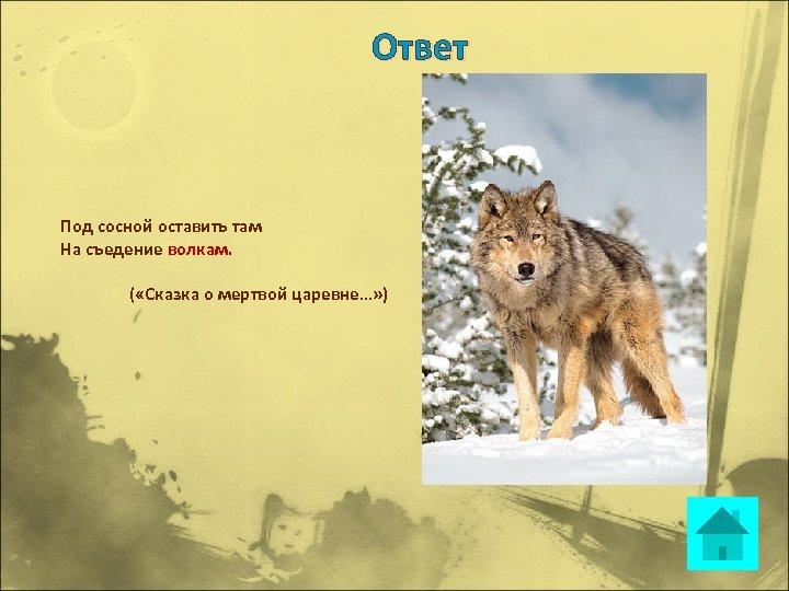 Ответ Под сосной оставить там На съедение волкам. ( «Сказка о мертвой царевне…» )