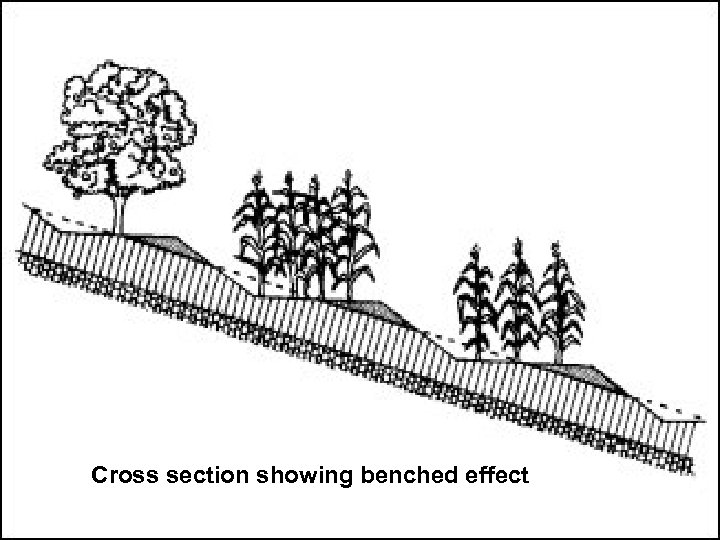 Cross section showing benched effect