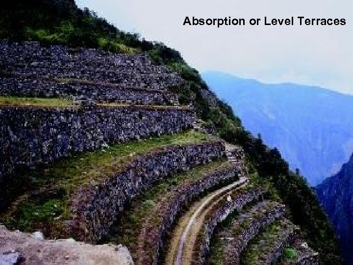 Absorption or Level Terraces
