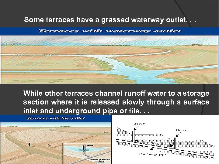 Some terraces have a grassed waterway outlet. . . While other terraces channel