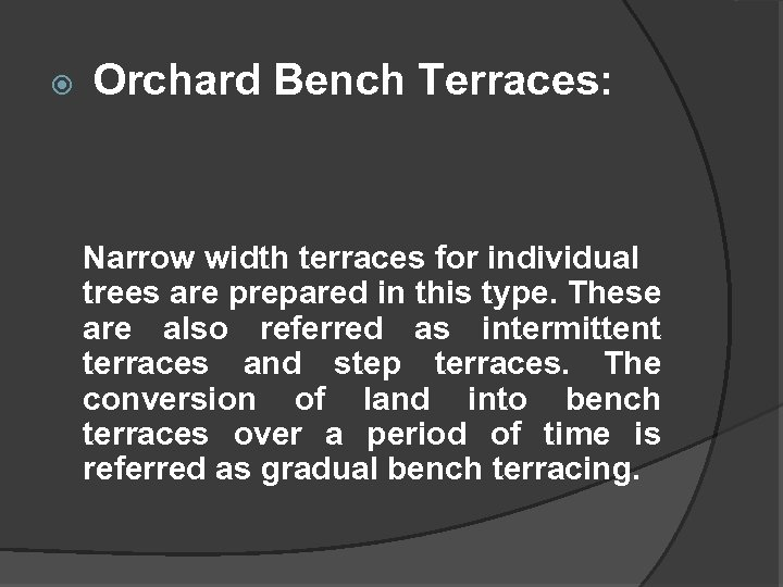 Orchard Bench Terraces: Narrow width terraces for individual trees are prepared in this