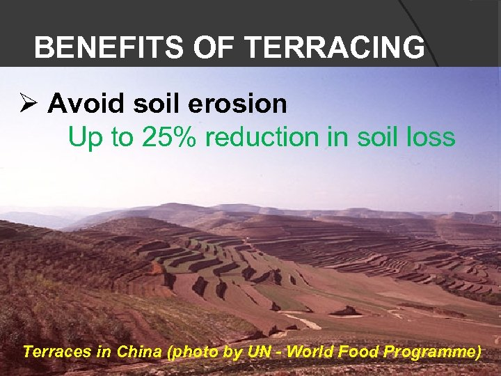 BENEFITS OF TERRACING Ø Avoid soil erosion Up to 25% reduction in soil loss