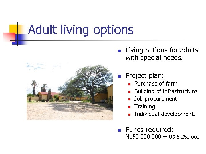 Adult living options n n Living options for adults with special needs. Project plan: