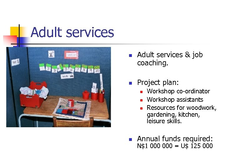 Adult services n n Adult services & job coaching. Project plan: n n Workshop