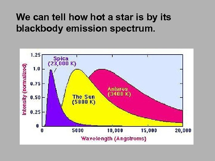We can tell how hot a star is by its blackbody emission spectrum.