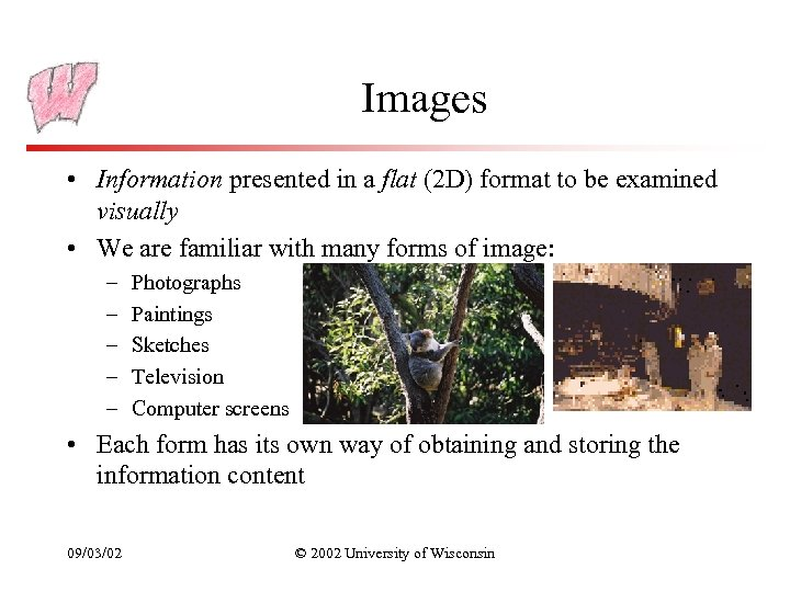 Images • Information presented in a flat (2 D) format to be examined visually