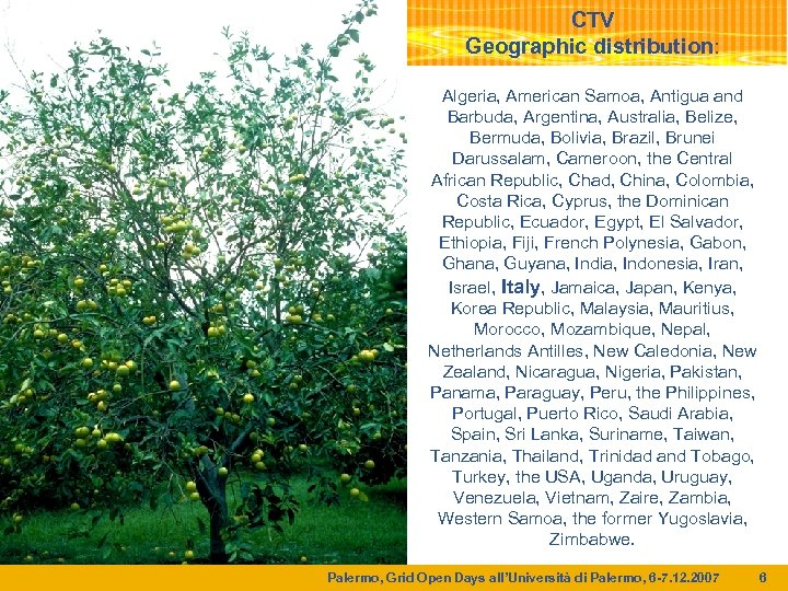 CTV Geographic distribution: Algeria, American Samoa, Antigua and Barbuda, Argentina, Australia, Belize, Bermuda, Bolivia,