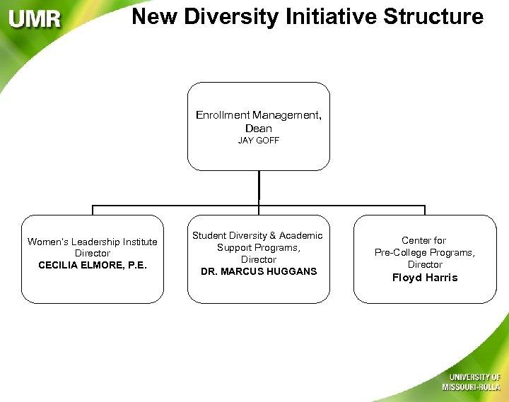 New Diversity Initiative Structure Enrollment Management, Dean JAY GOFF Women's Leadership Institute Director CECILIA