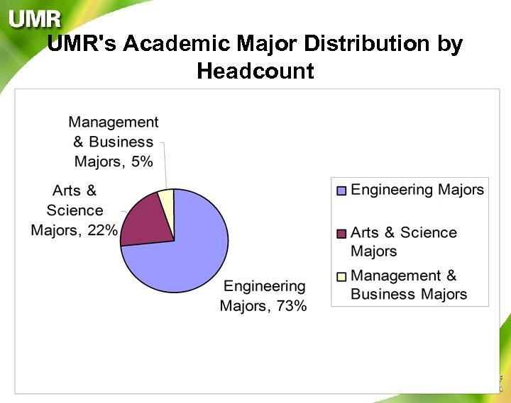 UMR's Academic Major Distribution by Headcount