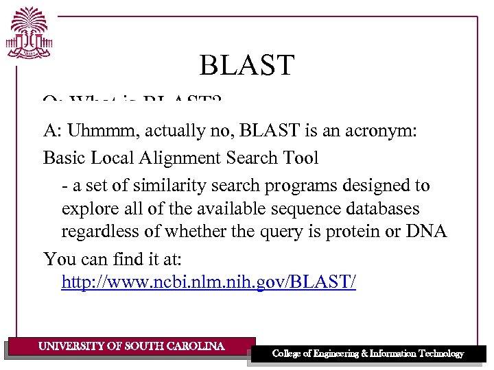 Bioinformatics Algorithms And Data Structures Blast Lecturer Dr