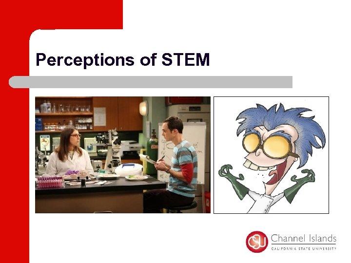 Perceptions of STEM