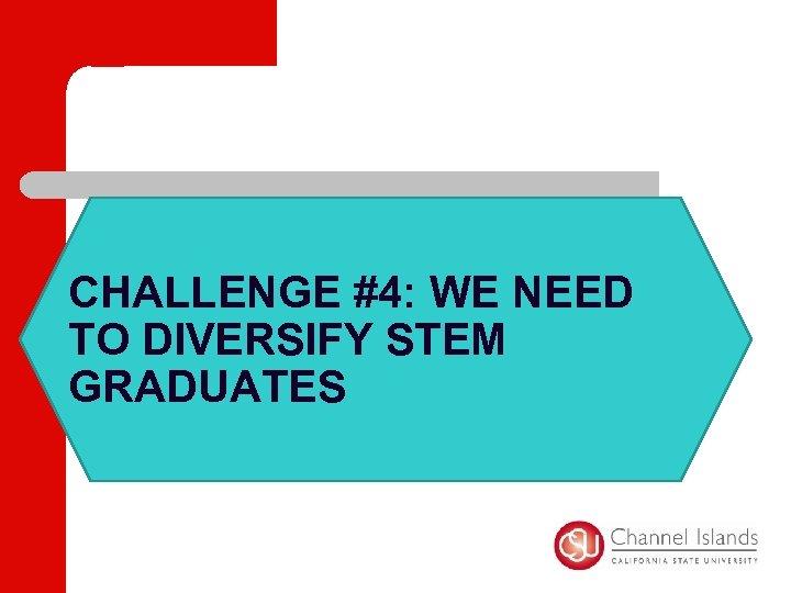 CHALLENGE #4: WE NEED TO DIVERSIFY STEM GRADUATES