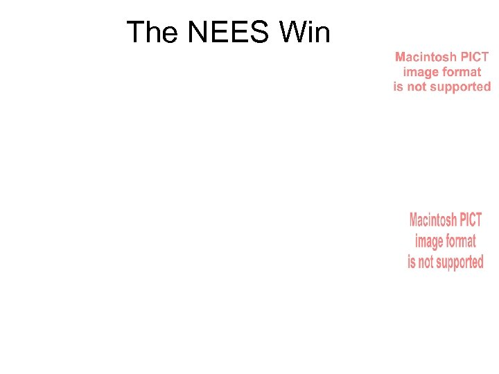 The NEES Win