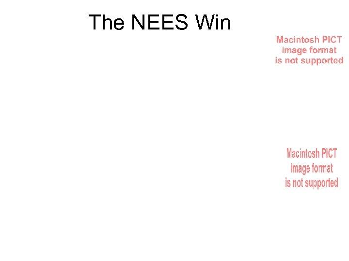 The NEES Win