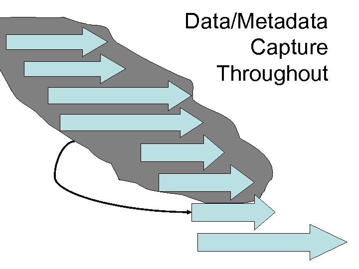 Data/Metadata Capture Throughout