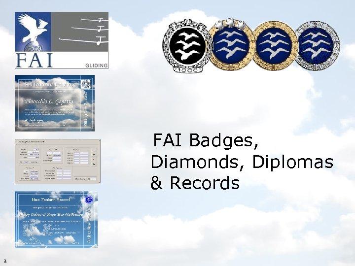 FAI Badges, Diamonds, Diplomas & Records 3