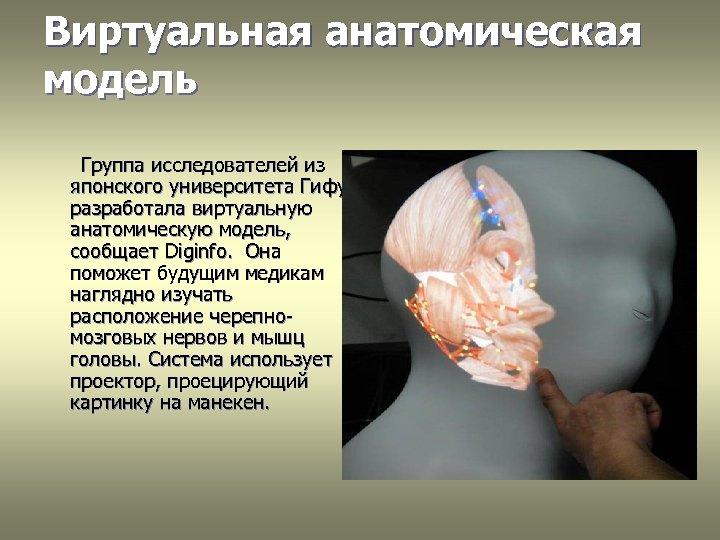 Виртуальная анатомическая модель Группа исследователей из японского университета Гифу разработала виртуальную анатомическую модель, сообщает